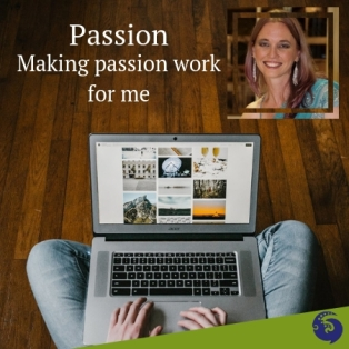 Making passion work for me, ideals, passionate, purpose, sole purpose, vocation, hummingbird, multipotentialite, scanner