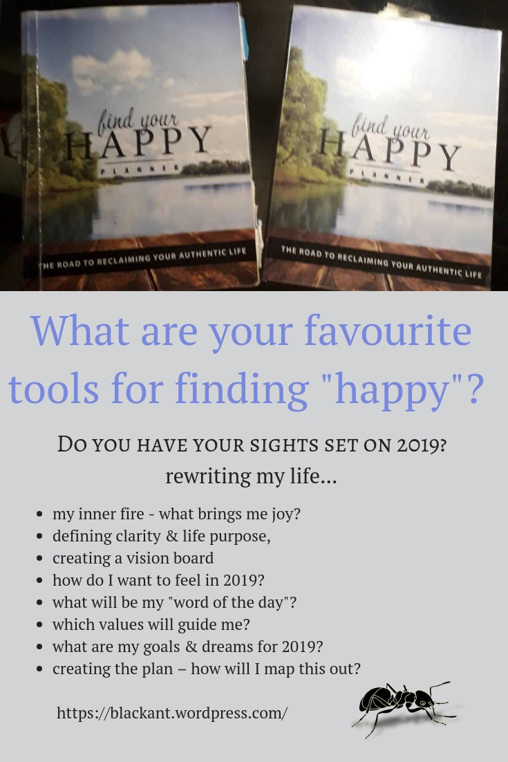 Find Your Happy, planning for 2019, 2019 goals, dreams, joy, happiness, change, small steps, defining, vision board
