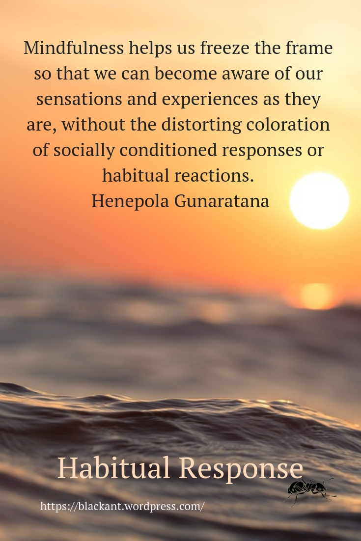 Mindfulness helps us freeze the frame so that we can become aware of our sensations and experiences as they are, without the distorting coloration of socially conditioned responses or habitual reactions.   Henepola Gunaratana, https://www.blackant.wordpress.com