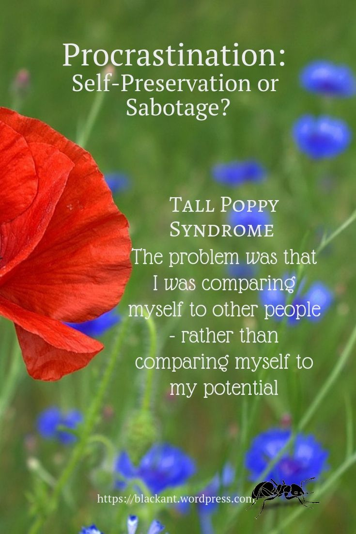 Tall poppy syndrome, The problem was that I was comparing myself to other people - rather than comparing myself to my potential