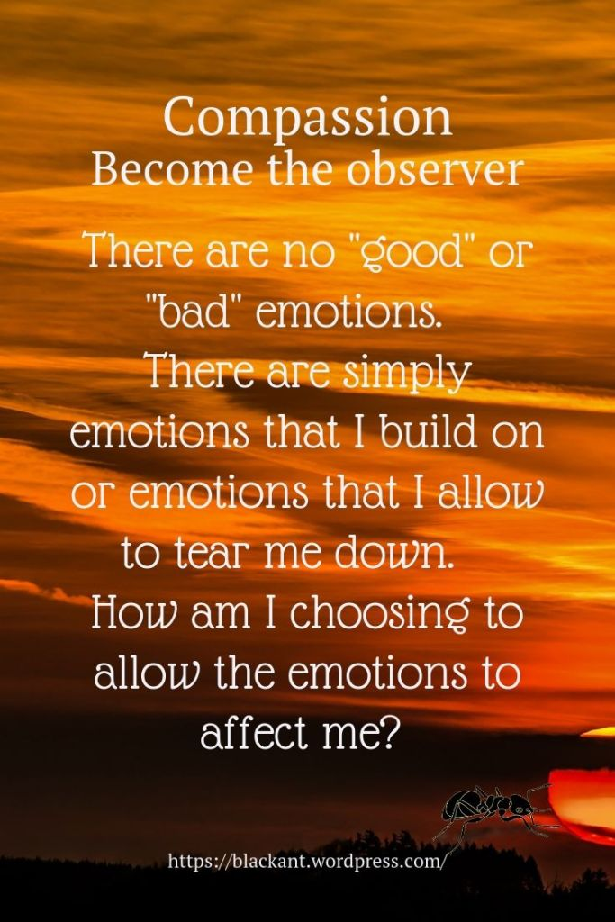 """Become the observer. There are no """"good"""" or """"bad"""" emotions. There are simply emotions that I build on or emotions that I allow to tear me down. How am I choosing to allow the emotions to affect me?"""