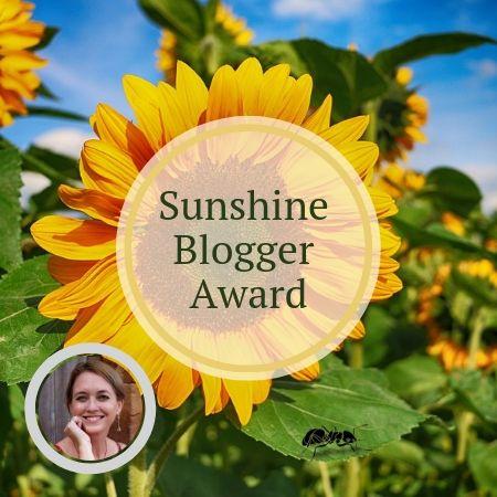 Sunshine Blogger Award, creative, inspiring, talented, entertaining, network of bloggers, like-minded people