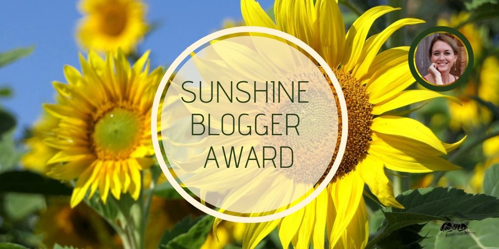 The Sunshine Bloggers Award - who nominated me? And who do I want to showcase as being creative, inspiring and thought-provoking?