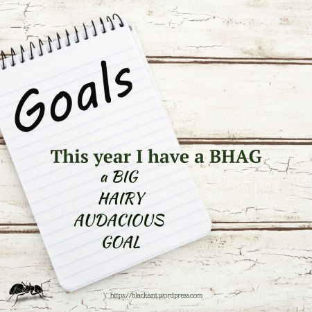 my BHAG, big, hairy, audacious goal, setting a BHAG, does it scare you, setting goals that scare you, taking on a huge project, translation projects, publishing a book, ups and downs, mBraining, why do this